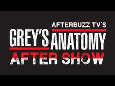 Grey's Anatomy Season 11 Episode 14 Review & After Show   AfterBuzz TV