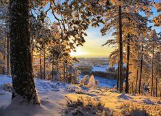 Finland  ©Valtteri Mulkahainen (via Affreschi & Affreschi)