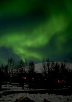 大学生の時にノルウェーのトロムソに行って観たオーロラ!最高に感動したけど、最高に寒かったTOT #his_green