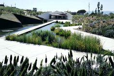 Jardín Botánico Barcelona