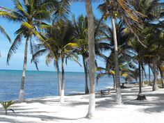 White sand, sunshine, turquoise water and hammocks.. add book or siesta...