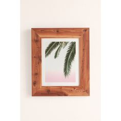 Wilder California Hanging Palm Art Print ($89) ❤ liked on Polyvore featuring home, home decor, wall art, photography wall art, photo wall art, landscape wall art, spring home decor and spring wall art