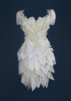 Another gorgeous dress. White radish