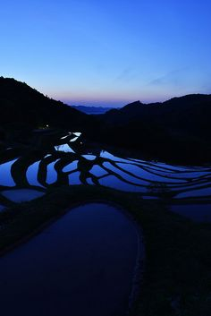 Blue moment at Rice Terrace, Oyama - Senmaida, Chiba, Japan