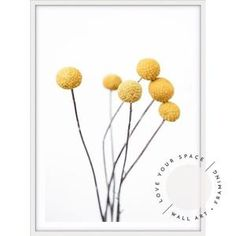 Shop Temple & Webster for All Wall Art to match every style and budget.