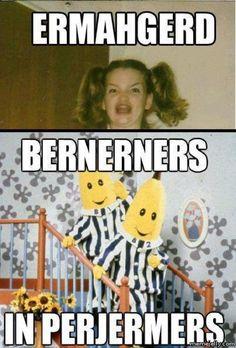 Bernerners in perjermers.