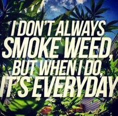 ☯☮ॐ American Hippie Psychedelic Herbal Weed ~ Smoke Everyday Stoner Quotes, Stoner Humor, Weed Quotes, Weed Memes, Weed Humor, 420 Quotes, Cannabis, Marijuana Art, Medical Marijuana
