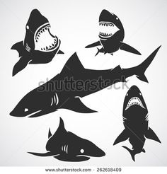 Find Set Big Sharks Black Silhouettes Vector stock images in HD and millions of other royalty-free stock photos, illustrations and vectors in the Shutterstock collection. Thousands of new, high-quality pictures added every day. Shark Silhouette, Deer Head Silhouette, Silhouette Vector, Cat Vector, Vector Art, Vector Stock, Big Shark, Shark Tattoos, Cute Sheep