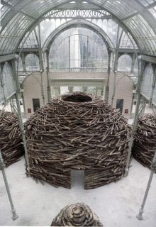 """En Las Entranas del Arbol"" by Andy Goldsworthy ~ Palacio de Cristal Madrid, Spain"