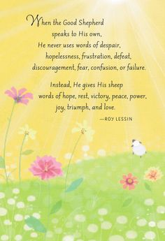 Image result for roy lessin quotes