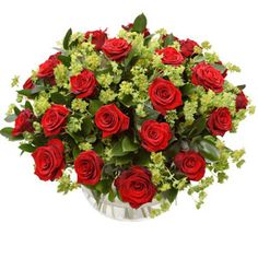 Flowers Direct Everlasting Love - Two Dozen Red Roses Make an extravagant gesture of love with 24 passion-red Roses arranged with deep green-leaf foliage. Created, Sold and Delivered by Local Florists. Your order for these flowers are normally placed wit http://www.comparestoreprices.co.uk/flowers-and-flower-delivery/flowers-direct-everlasting-love--two-dozen-red-roses.asp