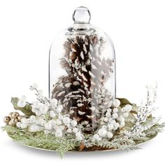 Add a touch of winter to your home with a frosted pine cone cloche.
