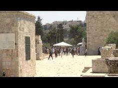 הפרות סדר בהר הבית (27.6.16) - YouTube Promised Land