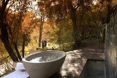 Morukuru Family Owner's House, Safari lodge South Africa