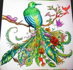 animorphia fågel målarböcker för vuxna | My name is Bond… BONDMORAN