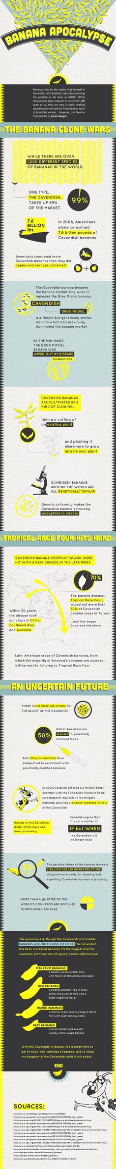 Banana Apocalypse #Infographic