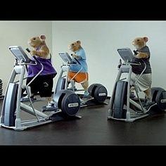 2014 Kia Soul Hamster Commercial (Lady Gaga