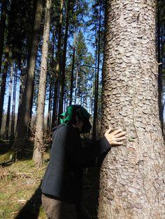 Spiel: Bäume finden
