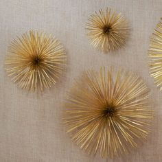 Darling Daly Design: DIY Sea Urchin Decor