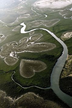 The heart shaped swamp of Lifou Island, New Caledonia.