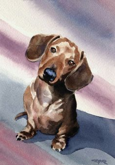DACHSHUND Art Print by Watercolor Artist DJ Rogers About the Artwork: This is a professional open edition Giclee print by artist David J. Artwork is printed on heavy, high quality Basset Dachshund, Dachshund Funny, Dachshund Art, Daschund, Dog Paintings, Watercolor Paintings, Watercolor Paper, Watercolor Trees, Watercolor Artists