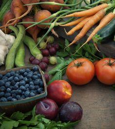 Paleo dieet: wat mag je wel en niet eten?