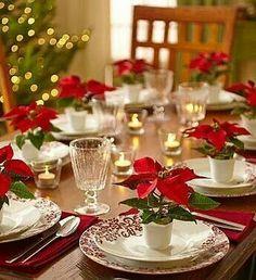 """Poinsettia""Christmas Flower"