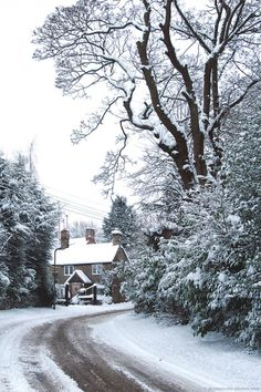 English cottage in snow Winter Snow, Winter Christmas, I Love Snow, Winter's Tale, Winter Scenery, Snow Scenes, Winter Beauty, Winter Pictures, Winter Landscape