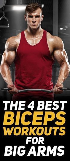 Check out the 4 best biceps workouts for big arms! This article pin points 4 different biceps workouts that will help you develop bigger arms. Ace Fitness, Mens Fitness, Fitness Tips, Fitness Goals, Fitness Motivation, Health Fitness, Biceps Workout, Gym Workouts, Fitness Exercises