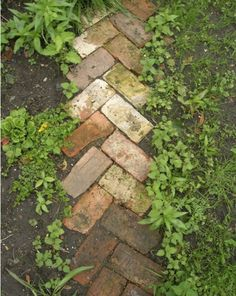 Garden Path with used Brick