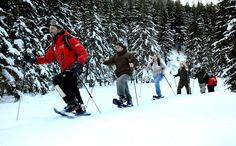 Neve, tanta neve, un paesaggio incantato, una natura selvaggia, un paese ancorato alle sue tradizioni per ritrovare se stessi, nell'adrenalina dello sport o nel relax del silenzio.   Si può sciare cinque mesi all'anno nel comprensorio internazionale dell'Espace San Bernardo, con 160 km di piste perfettamente innevate, adatte a tutte le capacità.. #ecoturismo #travel #viaggi #turismo #natura