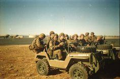 Bats on their jakkals Vietnam Veterans, Vietnam War, Parachute Regiment, Military Insignia, Defence Force, Paratrooper, Military Service, Bats, Military Vehicles