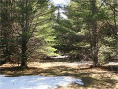 Pelkie, Houghton County, Upper Peninsula, MI Land For Sale - 20 Acres