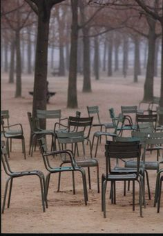 Le Jardin du Luxembourg~ Sit in one of these iconic green chairs and watch the older gentlemen in their berets, play boules.