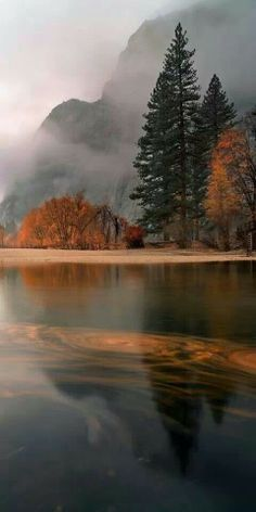 Autumn in Yosemite #Enchanted Nature