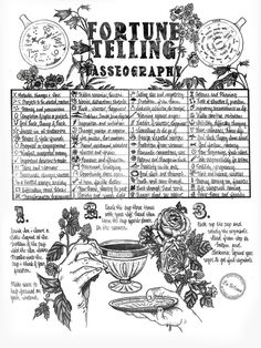 How to Tell Your Fortune by Reading Tea Leaves, According to a Real Witch Reading Tea Leaves, Tea Reading, Imprimibles Harry Potter, Real Witches, Witch Tattoo, Witchcraft For Beginners, Eclectic Witch, Fortune Telling, Witch Aesthetic