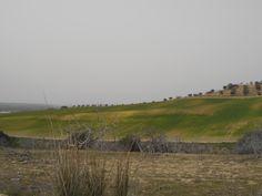 Camino de San Illan.
