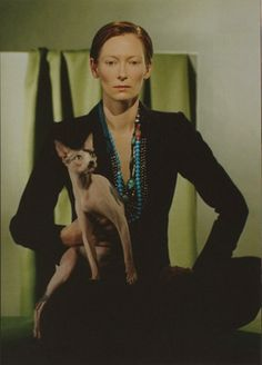 Tilda Swinton with a cat.