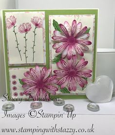 Stamping with Stazzy:  Daisy Delight Trio Card    Morning Everyone! ...