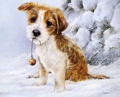 New DIY Diamond Painting Dog Bell Pet Rhinestones Diamond pattern mazayka Embroidery cross stitch Handicrafts Home Decoration Cute Cartoon Animals, Christmas Animals, Animal Paintings, Dog Art, Oil Painting On Canvas, Pet Portraits, Pet Birds, Dogs And Puppies, Doggies
