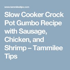 Slow Cooker Crock Pot Gumbo Recipe with Sausage, Chicken, and Shrimp – Tammilee Tips