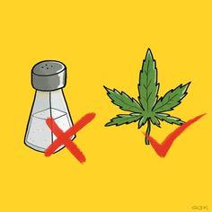 ¿Es razonable legalizar la marihuana al mismo tiempo que prohibir la sal? ¡Interesante debate! - El Definido