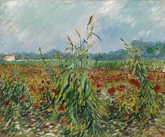 Green Ears of Wheat by Vincent van Gogh