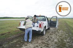 Control de aves en aeropuerto #México www.bioserpmex.com #Fauna