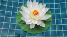 Gorgeous imitation lily pad decoration.  Floats on water. - Size: 11cm/4.4 inches in diameter  |  Promotions - BeautyLove Desire Beauty Desire Of a Goddess Beaut yLove Desire Beauty