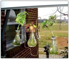 Window rooter