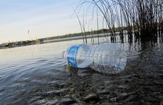 <p>Not to be forgotten, humans are also one of the species impacted by plastic pollution in the oceans. While man is obviously the source of all plastics that are clogging our waterways, he is also very much one of the victims of this sad story. </p>