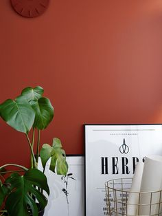 Teit   lisäyksen tauluun   Color Now 2017, vuoden värit    Vuoden 2017 ajankohtaiset sisustussävyt. Reippaan kaunis Tomaatti M316. Trendy colors of the year 2017.