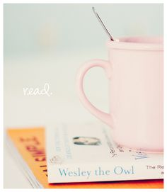 Wesley the Owl is an all-time favorite.  SO GOO! I found it on a bargain shelf at Books a Million and have since gotten many  people to buy copies for themselves.