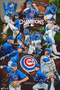 Cubs 2016 World Series Campions Chicago Cubs Pictures, Chicago Cubs Fans, Chicago Cubs World Series, Chicago Bears, Baseball Posters, Cubs Baseball, Cubs Players, Mlb Teams, Sports Teams
